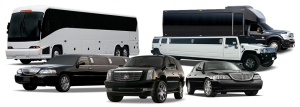 Houston Chauffeur Bus Rentals, Executive Airport Transfers, Corporate Travel, Events, tours, Weddings, Professional, Black Car Service, Valet Service, Sedan, SUV, Charter Bus, Shuttle, Limo