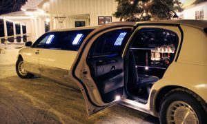 Houston Christmas Lights Limo Rentals, Limousine, Sedan, Van, SUV, Party Bus, Shuttle, Charter, Spirit, Holiday, Trail of Lights, Santa, Dallas, December Nights